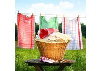 Környezetbarát mosás (23)